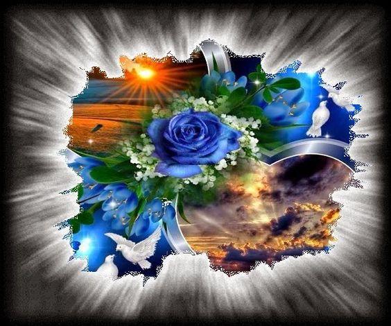 • Rózsák és virágok: