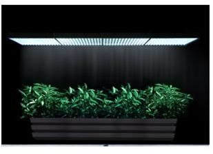 54W 5600K LED Grow Light Indoor Plants & Aquarium