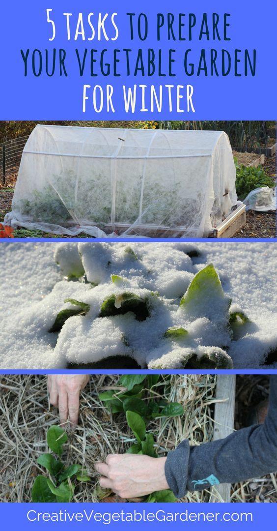 eb83354153e8b345c2546d1e83441b91 - What Can Gardeners Do In Winter