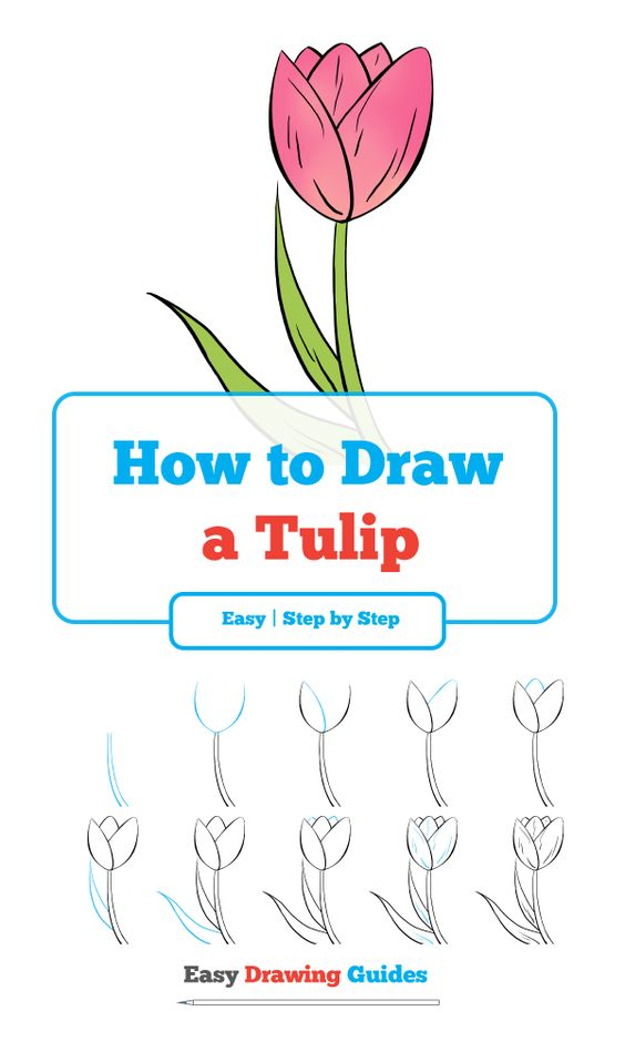 How To Draw A Tulip Really Easy Drawing Tutorial Drawing Tutorial Easy Flower Drawing Tutorials Easy Flower Drawings