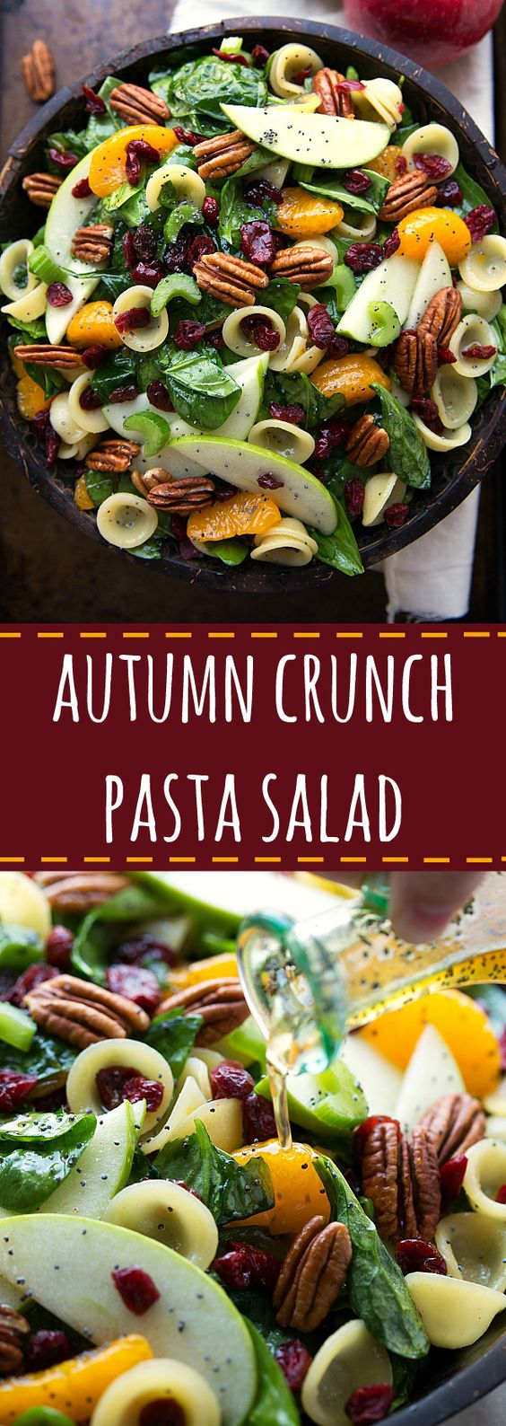 Delicious spinach pasta salad with cranberries, pecans, apple, and mandarin orange: