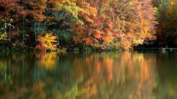 晩秋の裏磐梯 .Autumn in Ura Bandai