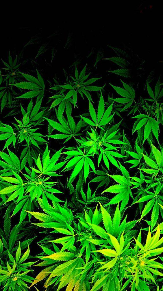 A wallpaper made via request. Fits iPod 4 iPhone resolution iPod/ iPhone weed marijuana cannabis  Wallpaper