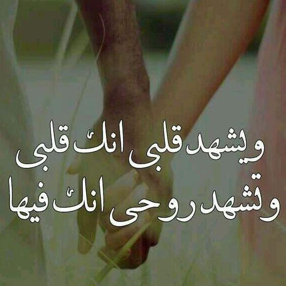 احلى كلام كلام جميل من القلب قصير