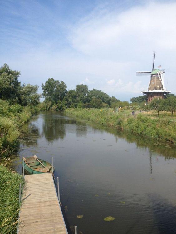 Gardens Holland And Windmills On Pinterest