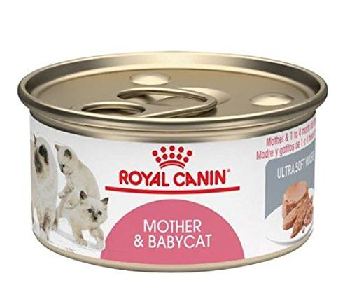 Royal Canin Mother And Babycat Ultra Soft Mousse Canned Cat Food Pack Of 24 3ounce Cans Want To Know More Click On Canned Cat Food Kitten Food Feline Health