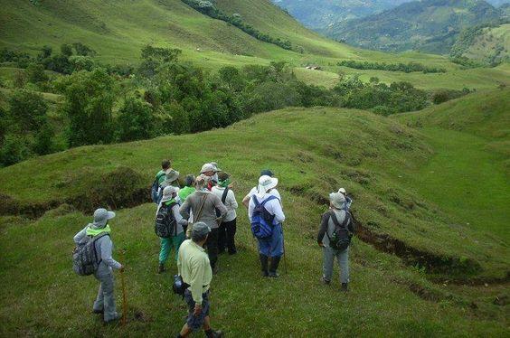¿Has caminado por los 7 cerros tutelares, conoces el nacimiento del río Medellín o el Quitasol en Bello, has ido a la vereda La Miel en Envigado, a San Félix o a Támesis? Si la respuesta es no en la mayoría de ellos, esta información es de utilidad para ti.