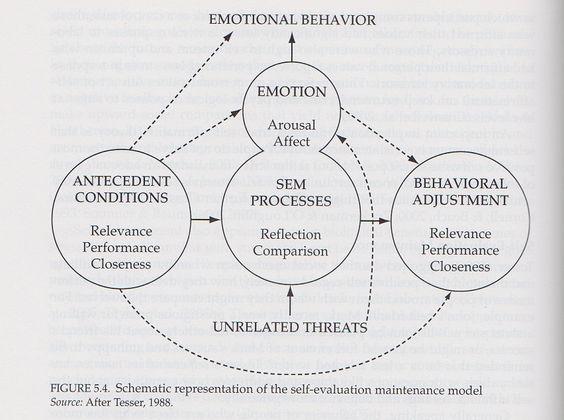 SelfEvaluation Maintenance Model  Social Cognition