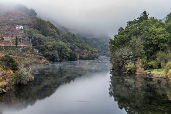 https://flic.kr/p/BWTZYb | Río Miño | Primeras horas de la mañana, esperando que se levante la niebla