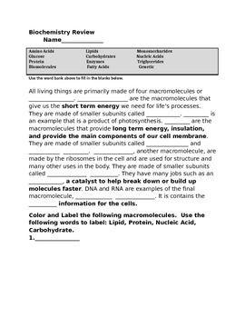 Worksheets Biomolecules Worksheet biomolecules worksheet virallyapp printables worksheets template worksheet
