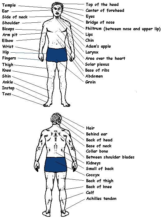 Pleasure Pressure Points Of The Body