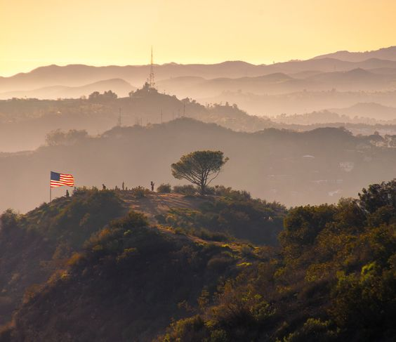 Wednesday: Ranking wellness in California, Los Angeles re-elects its mayor, and the Wisdom Tree pilgrimage.