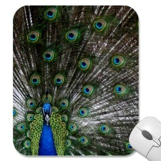 Peacock plumage mousepads by Imaginative Imagery. $10.95   http://www.zazzle.com/peacock_gifts_peafowl_mousepads_feathers_picture-144808123565751916?rf=238222133794334761