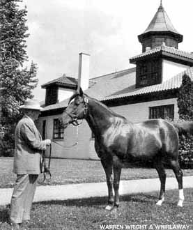 Whirlaway 1941 Triple Crown Winner, 1941 Horse of the Year, 1942 Horse of the Year