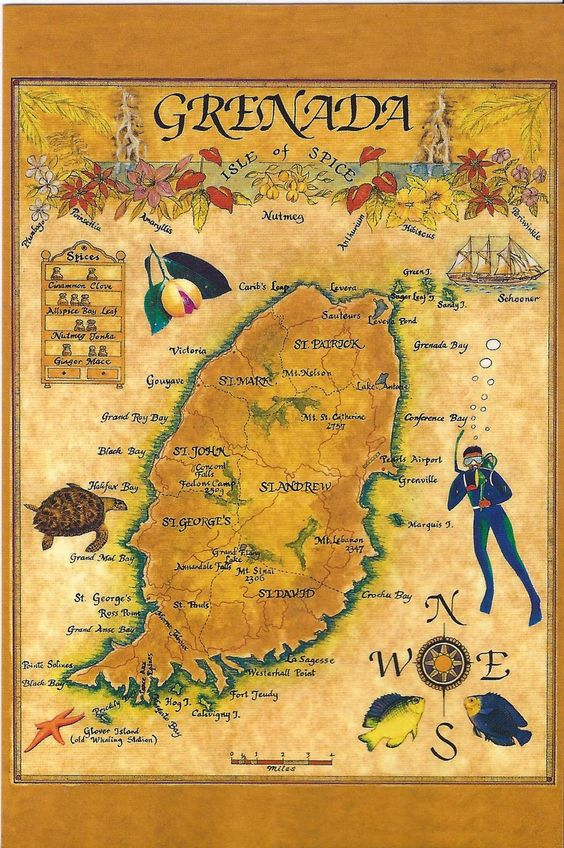 Grenada Illustrated Map Island Hopping In The Caribbean Day - Map of grenada caribbean islands