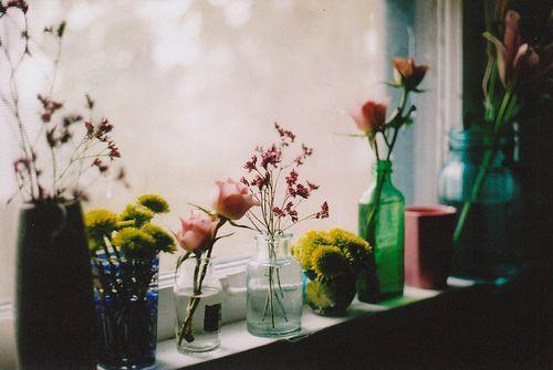 windowsill.