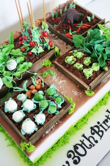 Vegetable garden cake i want this for my next birthday for Vegetable garden cake ideas