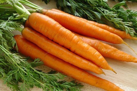 Os benefícios da cenoura para a saúde - Sabor em Movimento