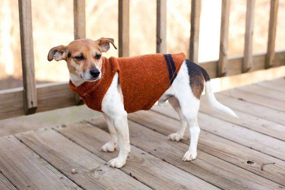 Como fazer roupa de cachorro 7