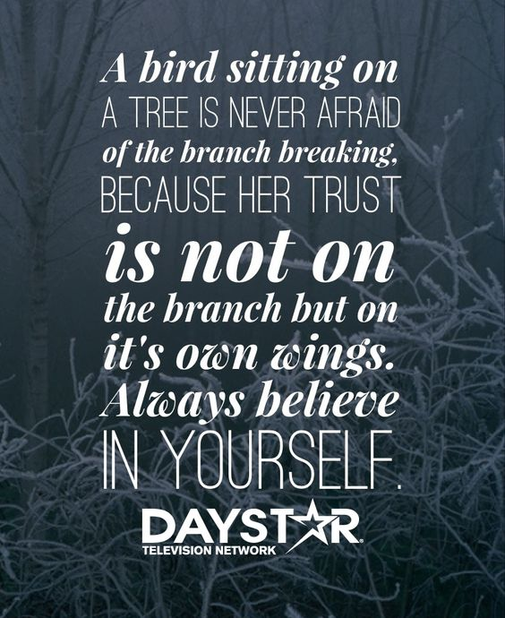 A bird sitting on a tree is never afraid of the branch breaking, because her trust is not on the branch but on it's own wings. Always believe in yourself. [Daystar.com]