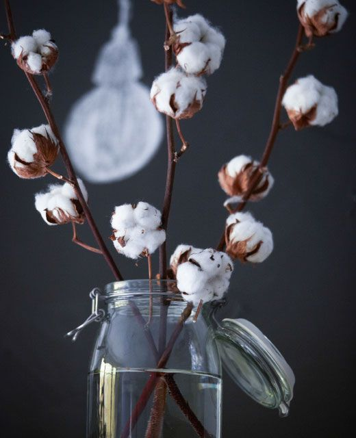 Ein paar Äste in einer Vase bringen Natur in den Wohnraum ...