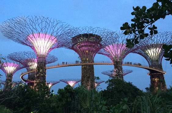 Singapore Low Budget Tipps