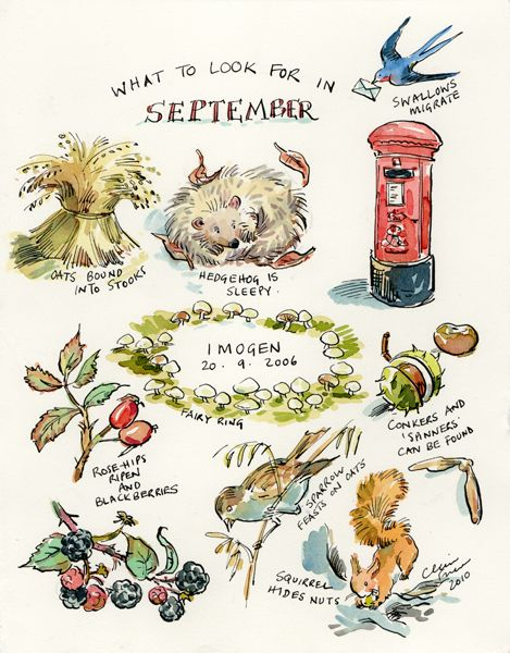 What To Look for in #September Beautiful #illustration #prompt http://www.clairefletcherart.com/: