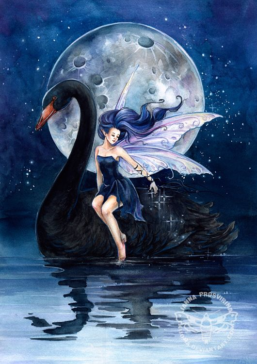 Balck Swan ll by *Kuoma on deviantART: