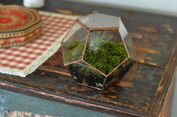 Universe Terrarium Kit, large dodecahedron glass terrarium with a hinged door -- copper or silver color -- eco friendly.