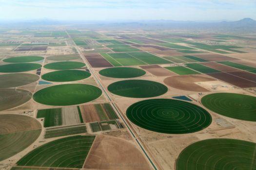 Mysterious crop circles (15 pieces)