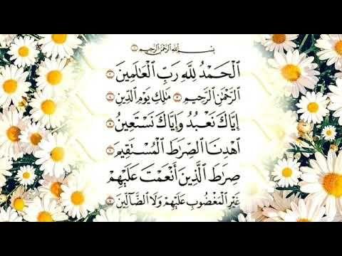 سورة الفاتحة اية الكرسي المعوذات تطرد العين بصوت رعد الكردي Youtube Islamic Art Quran Recitation Pretty Cats