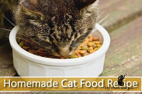 Pin By Deborah Voves On Myowncats Healthy Cat Food Food Animals Homemade Cat Food