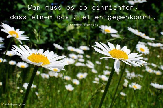 Mein Papa sagt... Man muss es so einrichten, dass einem das Ziel entgegenkommt. Theodor Fontane  #zitat #deutsch #quotes      Weisheiten & Zitate TÄGLICH NEU auf www.MeinPapasagt.de