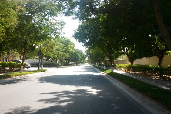 Tree lined street in The Meadows, Dubai