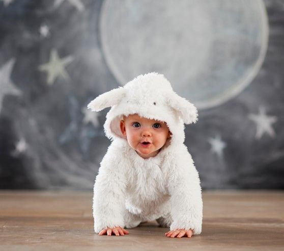 $59 Baby Lamb Costume | Pottery Barn Kids