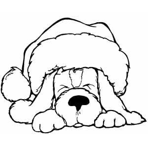Santa Hat Sleeping Dogs And Coloring On Pinterest