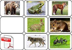 La moufle - photos des animaux