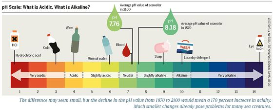 Aquaponics Ph Explained Finding The Perfect Balance In 2020