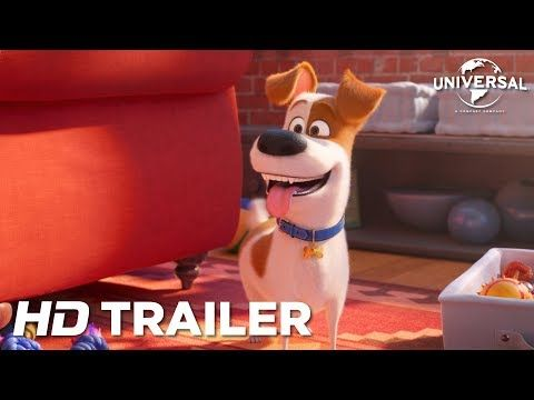 The Secret Life Of Pets 2 Official Trailer Youtube Pet Training Pads Pet Beds Cat Pets