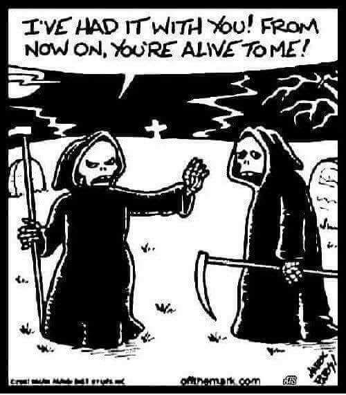 Pin By Cesar Moctezuma On Dark Humor Halloween Jokes Death Humor Halloween Funny