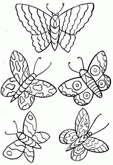 coloring page Butterflies - Butterflies
