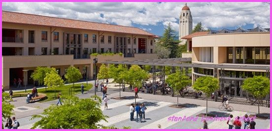 The Latest Trend In Stanford Business School Stanford Business School Https Businessneat Com The Lates Stanford Campus Business School Standford University