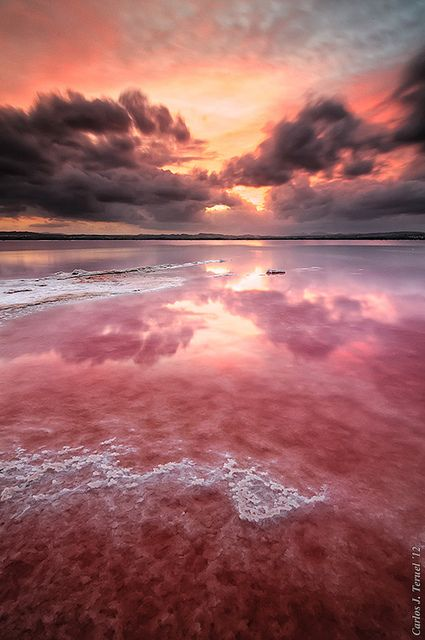 Outburst of colors by XavierSam on Flickr.