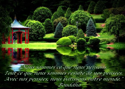 Extrem jardin zen citation bouddha | Jardin zen | Pinterest | Zen  WI05