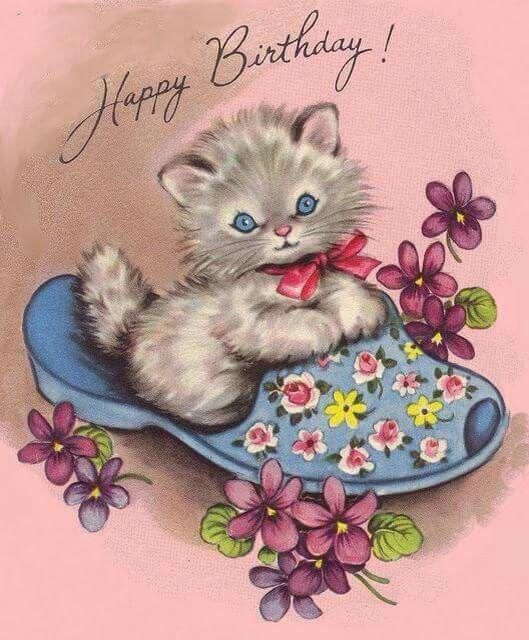 Birthday Kitten In Flower Print Slipper: