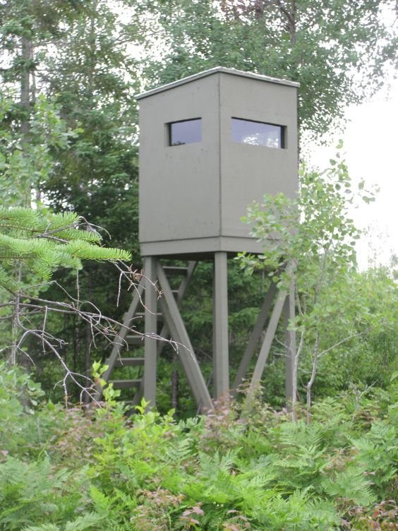 Towers and homemade on pinterest for Diy deer stand plans