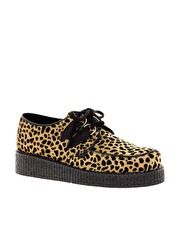 Leopard Pony Creepers