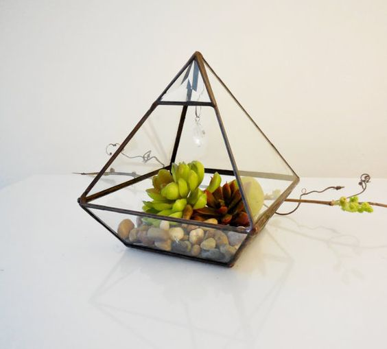 Terrarium clear glass planter modern terrarium for Indoor gardening glasses