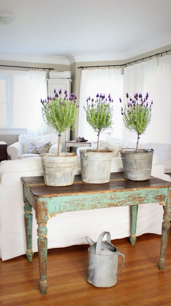 Lavender topiaries in galvanized buckets, lovely distressed green table, Rustic Farmhouse: