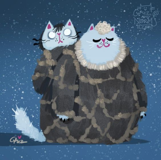 Bran and Hodor kitty.